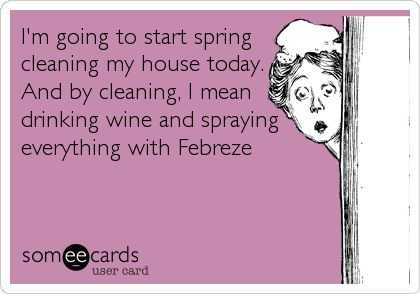 24 Funny Pictures about Spring Cleaning - febreze it