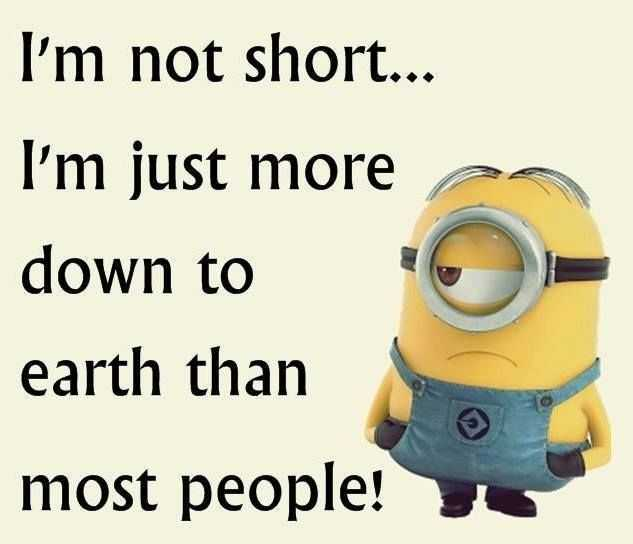 Funny Minion Images With Captions - Short