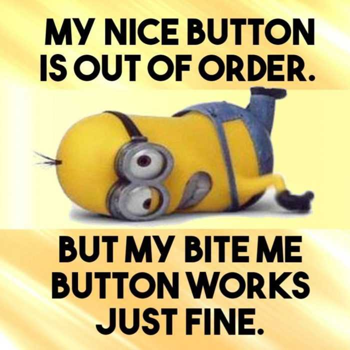 Funny Minion Images With Captions - Nice Button