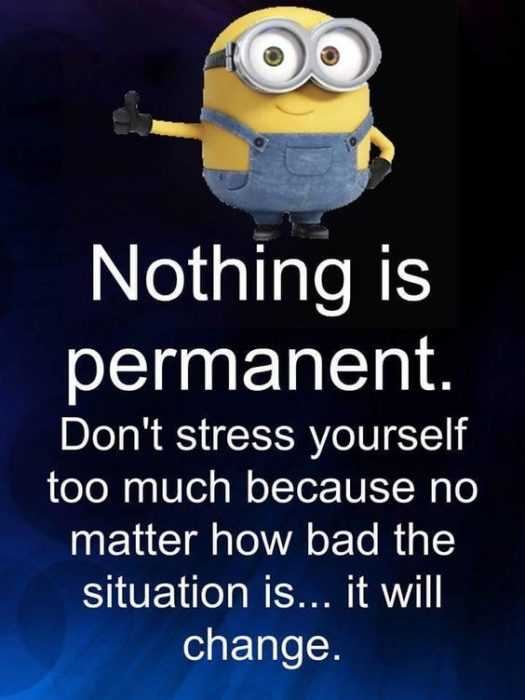 Funny Minion Pictures With Sayings - Permanent