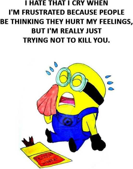 Funny Minion Images With Captions - Frustration