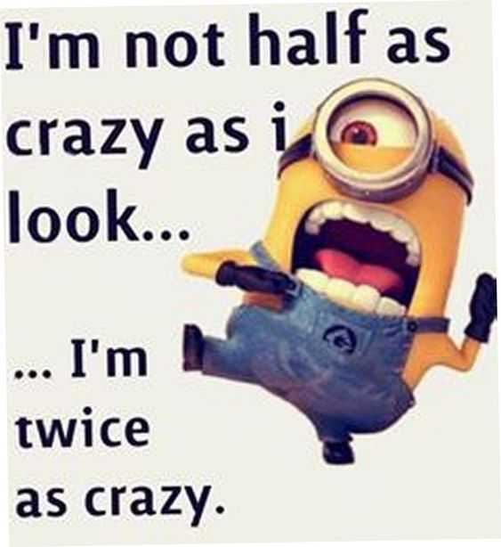 Funny Minion Pictures With Sayings - Crazy