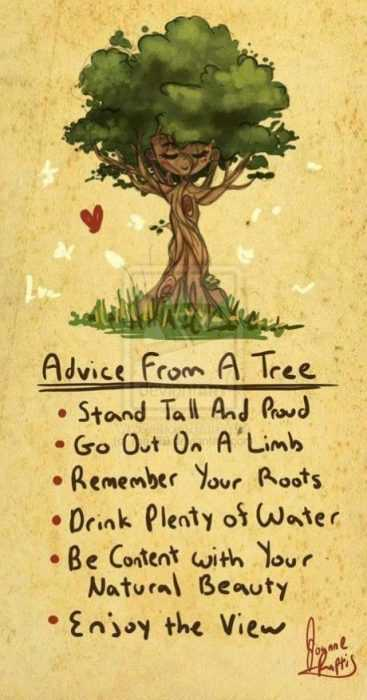 Quotes About Struggle - Tree
