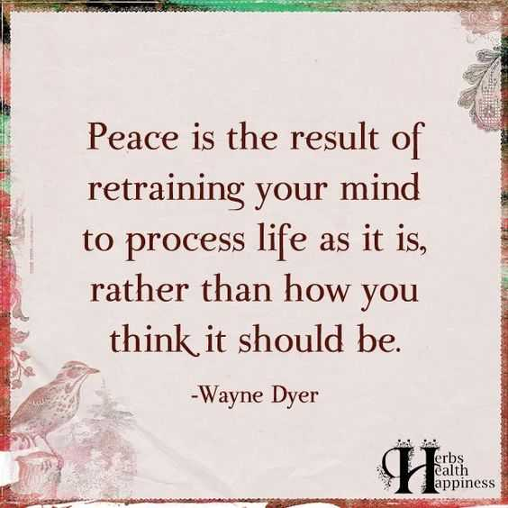 Quotes About Struggle - Peace