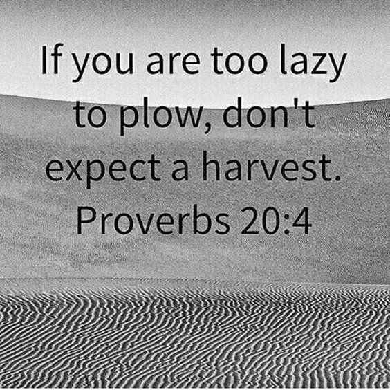 Amazing quotes for struggles in life - harvest