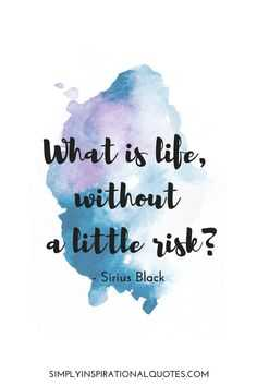Memorable Risk taking quotes