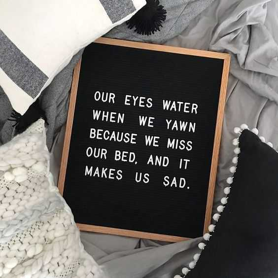 Funny letter board quotes - good observations