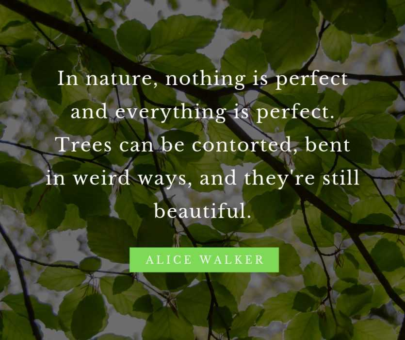 Inspiring quotes about nature and beauty