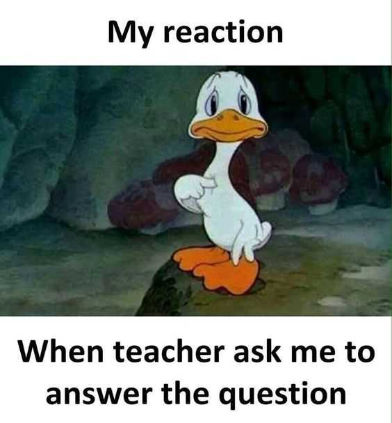 meme showing a duck looking nervous pointing at himself captioned my reaction when teacher asks me to answer the question