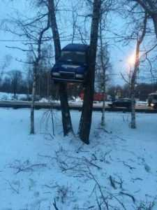 a car stuck between 2 trees