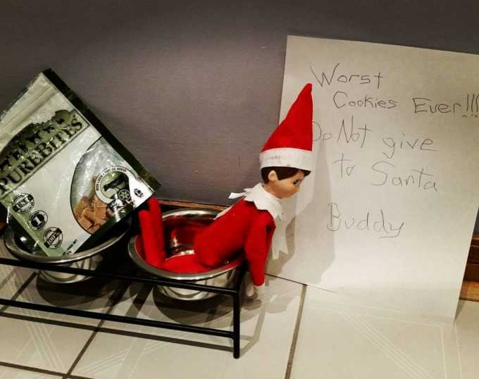 clever elf on the shelf ideas - worst cookies dog cookies for Santa