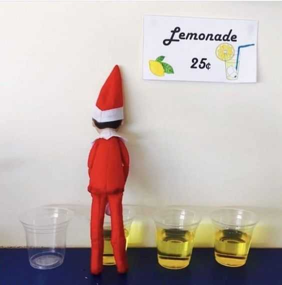 clever elf on the shelf ideas - peeing in cut lemonade