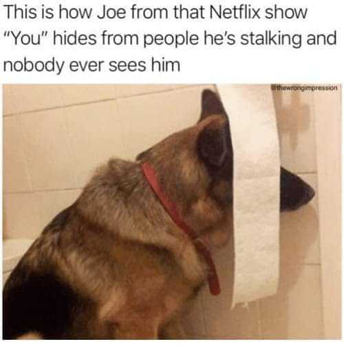 33 Funny Memes for You Fans and Anyone Who Loves Joe ...
