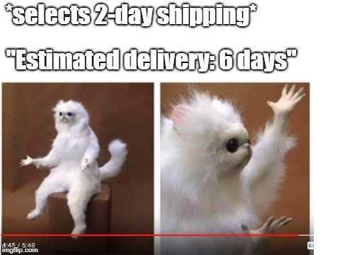 Funny Amazon Memes - Amazon 2 Day Shipping