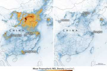 NASA image of nitrogen dioxide levels over china between jan 2020 and feb 2020
