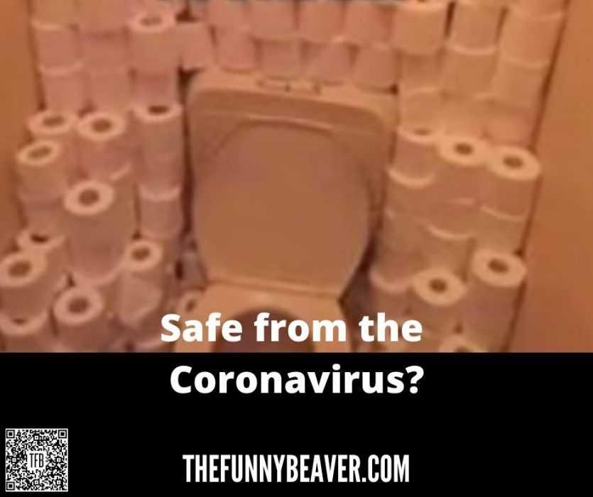 corona virus toilet paper hoarding memes - staying safe