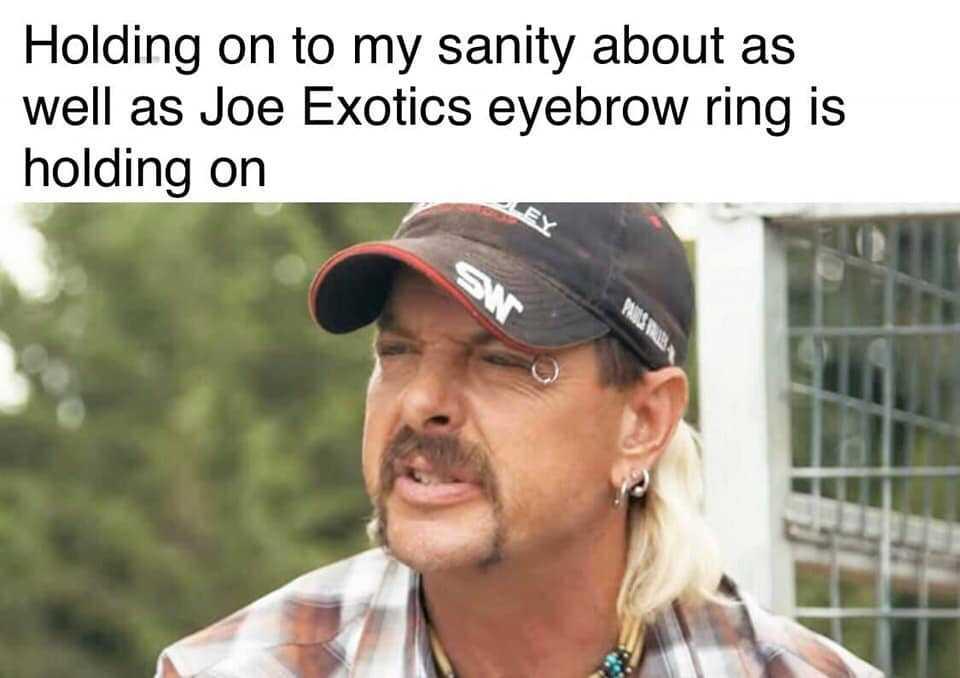 tiger king memes - joe exotics eyebrow ring