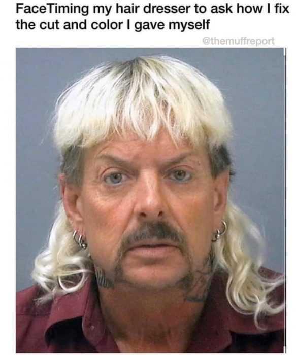 tiger king memes - facetiming hair dresser