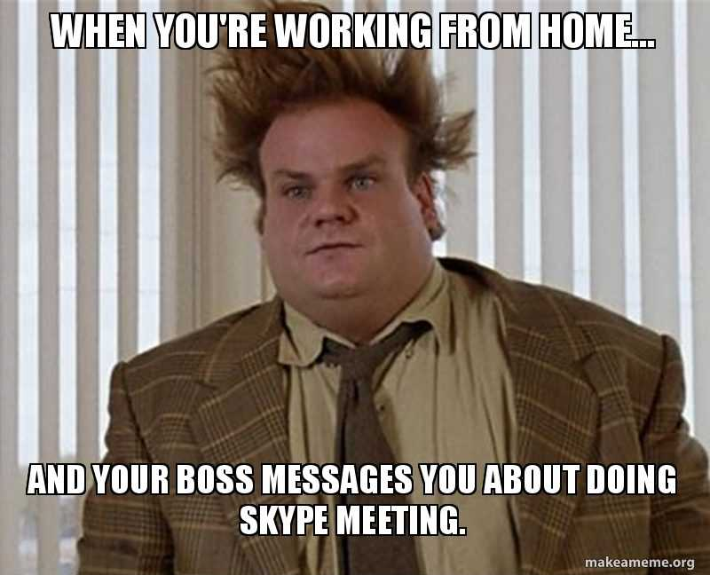Funny Work From Home Memes | The Funny Beaver