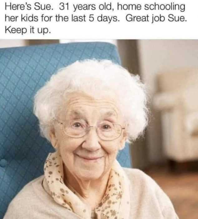 homeschooling memes - 31 year old sue looks like she's 71 after homeschooling her kid for 5 days.