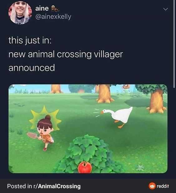32 Animal Crossing Memes For When Tom Nook Is Getting You Down The Funny Beaver