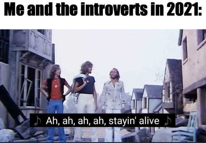Funny Quarantine Memes - Introverts Just Lovin' It