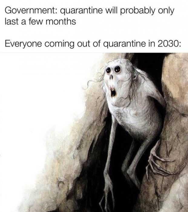 32 More Funny Quarantine Memes - #QuarantineLife #stircrazy