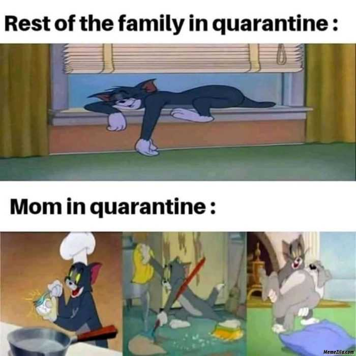 Funny Quarantine Memes - Quarantine Differences