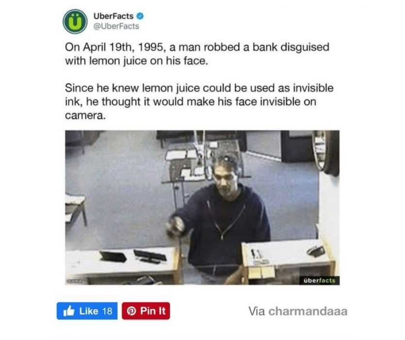 worry for humanity - life fails - dumb bank robber fail
