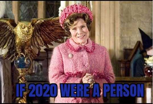 2020 memes - if 2020 were a person
