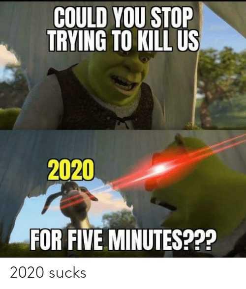 2020 memes - 2020 meme depicting shrek asking 2020 to stopp killing us