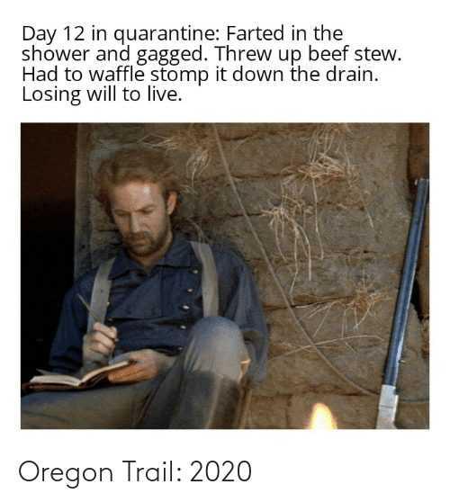 2020 memes - 2020 meme depicting oregon trail 2020