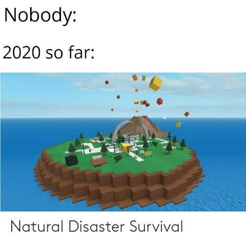 2020 memes - 2020 meme depicting natural disaster survival