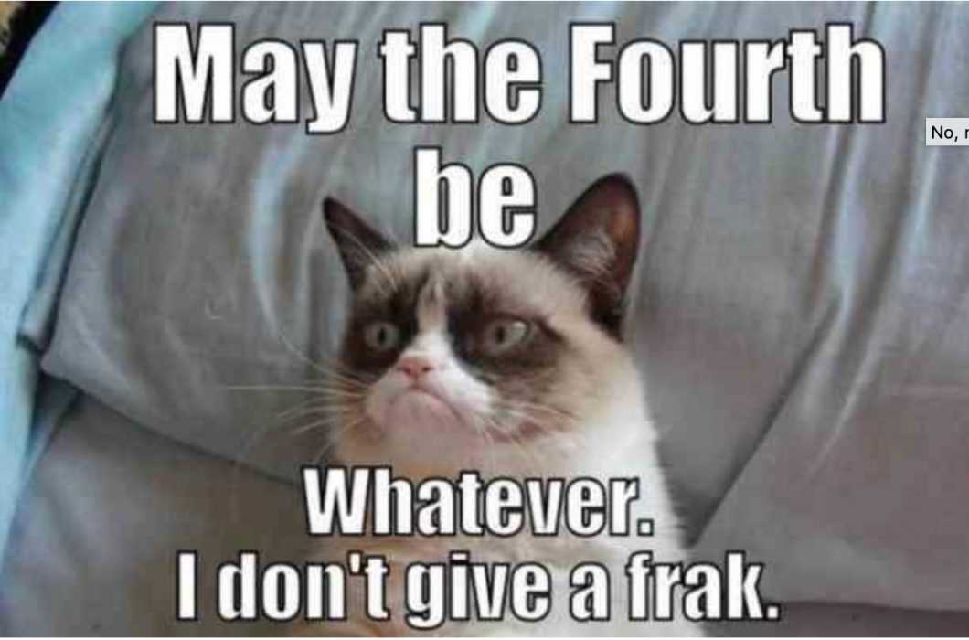 star wars day memes - may the 4th be with you memes - what everyone and animal thinks on this day