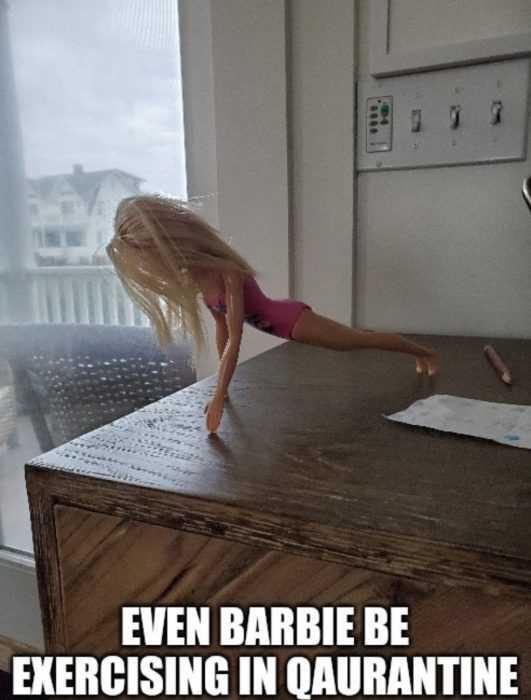 barbie home fitness meme