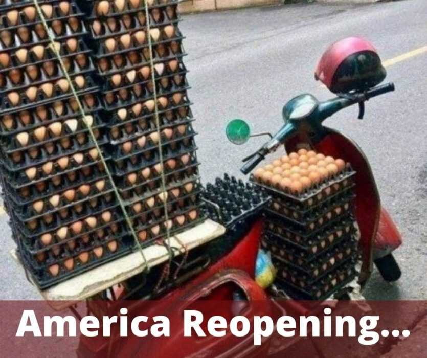 america reopening like eggs carried on a moped