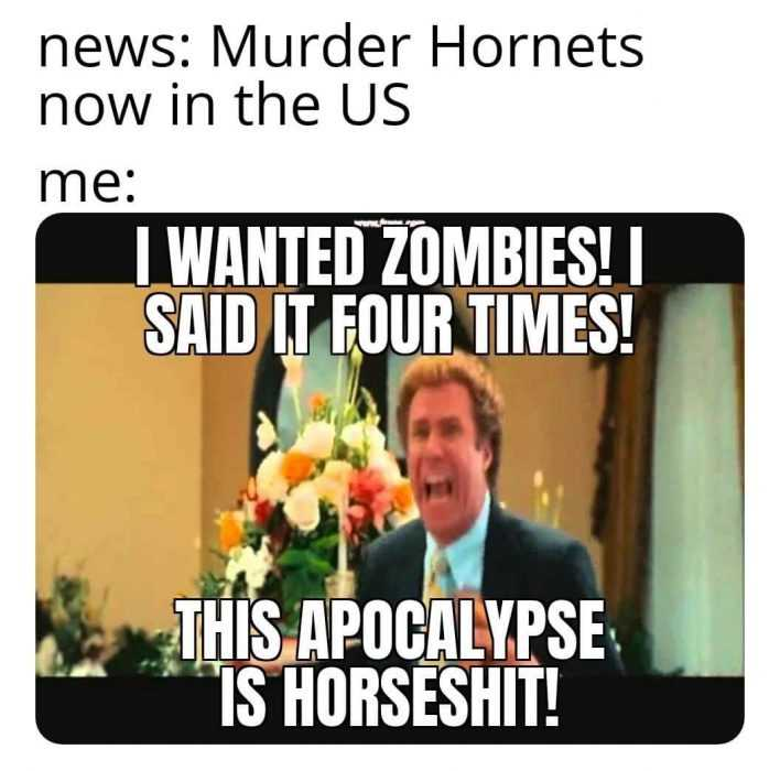 murder hornet meme featuring will ferrel wanting zombies and not hornets