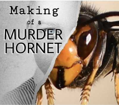 meme featuring a documentary called making of a murder hornet