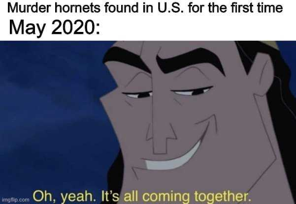meme featuring a cartoon villain saying it's all coming together when news of murder hornets in us found.