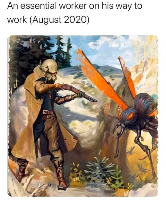 meme featuring an essential worker in august 2020 is someone with a shot gun to take out murder hornets