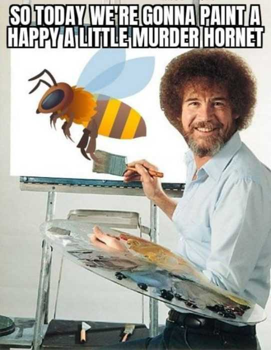 meme featuring a stay at home activity of painting a happy little murder hornet