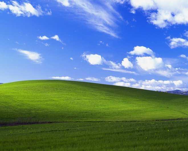 microsoft windows zoom background