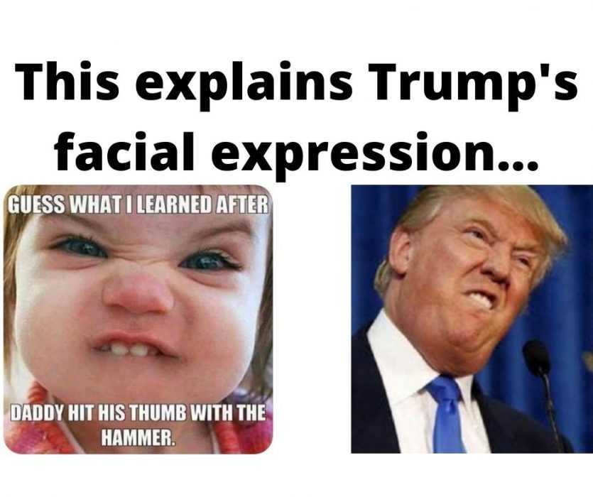 comparison of donald trump and child's facial expression