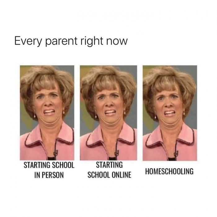Funny Back To School Memes - school in person, online, homeschool, all ugh