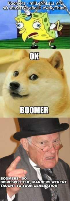 ok boomer meme making fun of old people who demand respect
