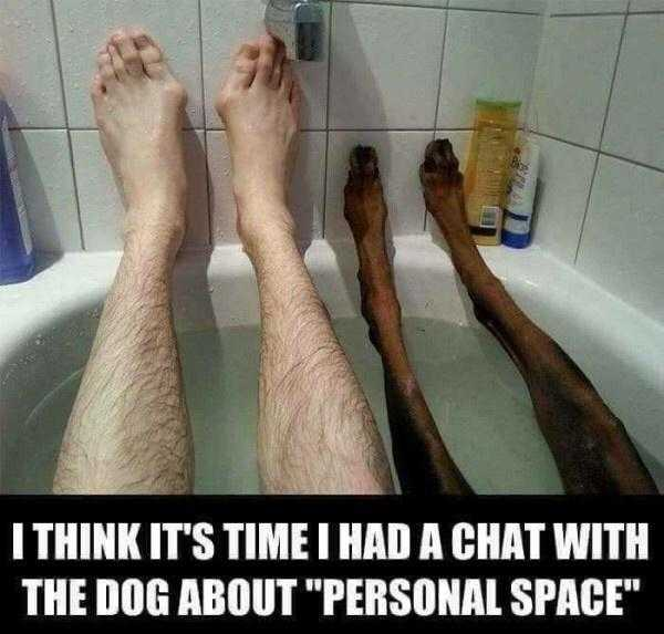 Photo Of Man And Dog In Bathtub Showing Legs