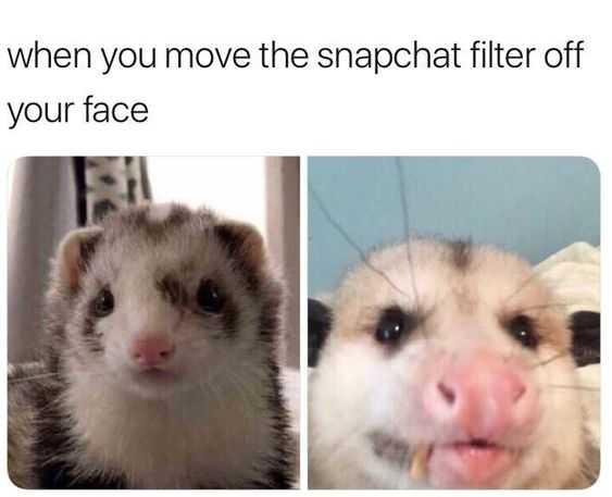 Snap Chat Filter Fail
