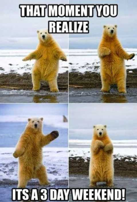 Funny Labor Day Memes polar bear doing the shuffle