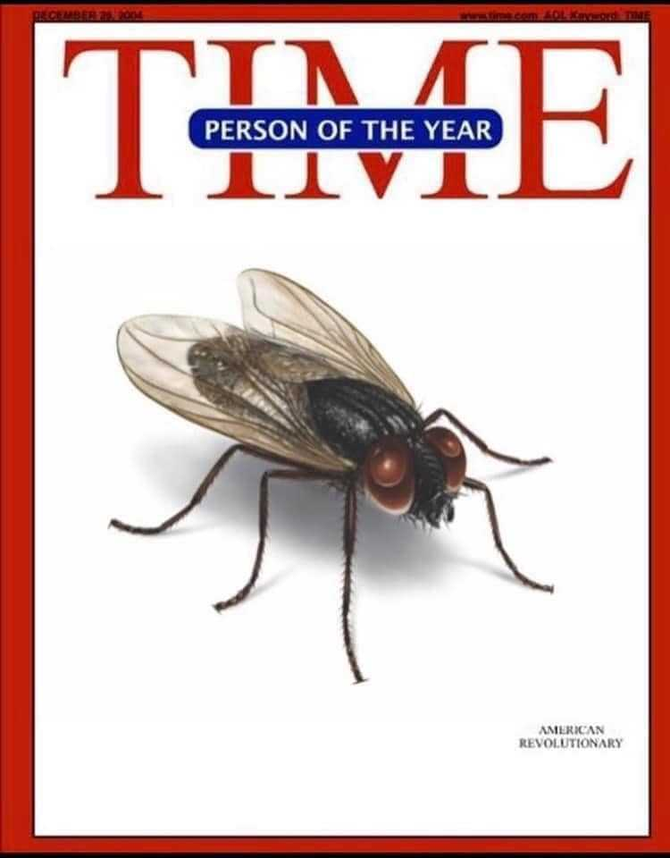 Debate Fly Memes 2 - time cover