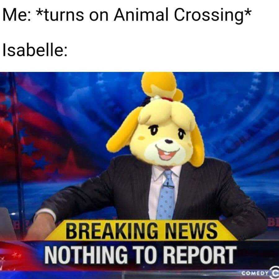 Funny animal crossing memes - Lots happening while you were gone!